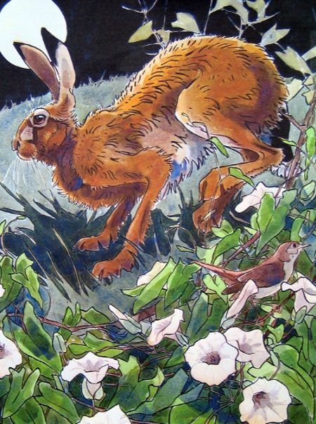 'Hare and Nightingale' by Andrew Haslen (W011)