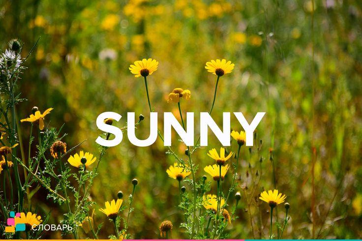 Sunny |ˈsʌni| — солнечный, солнечно, веселый, радостный  Sunny disposition |ˌdɪspəˈzɪʃn| — жизнерадостный характер  Sunny smile — радостная улыбка  Sunny side — наилучшая сторона (чего-л.)  On the sunny side of thirty — моложе тридцати  To look on the sunny side of things — смотреть бодро на вещи, быть оптимистом   #treewords #english #englishteacher #englishlearning #englishskype #idioms #учуанглийский #английскийязык #английскийонлайн #английскийпоскайпу #идиомы #выражения