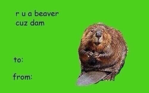 after seeing one too many of these, i've decided i might just participate in valentines day. might.