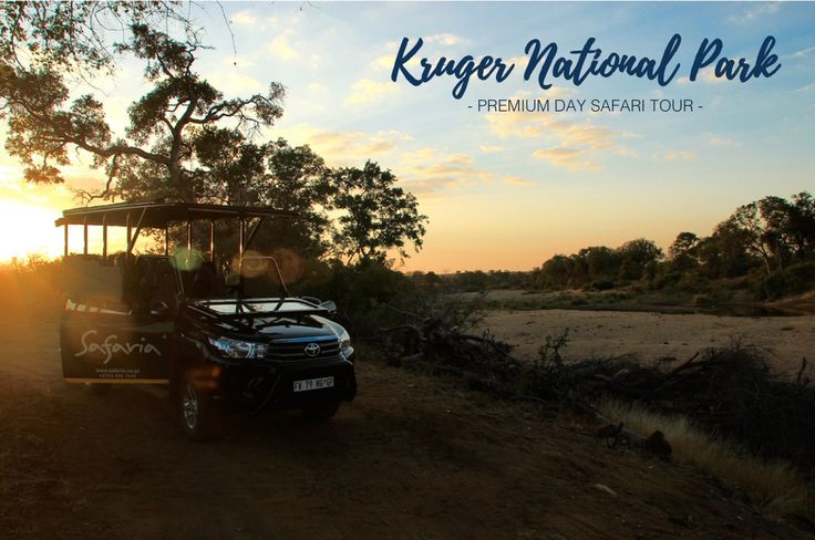 #safaria the Premium Kruger Park Day Safari experience