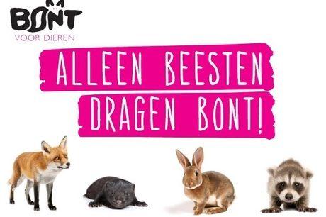 Bont voor Dieren https://www.justgiving.nl/nl/charities/157-bont-voor-dieren