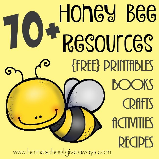 70+ FREE Honey Bee Resources: Printables, Crafts & MORE! | Free Homeschool Deals ©