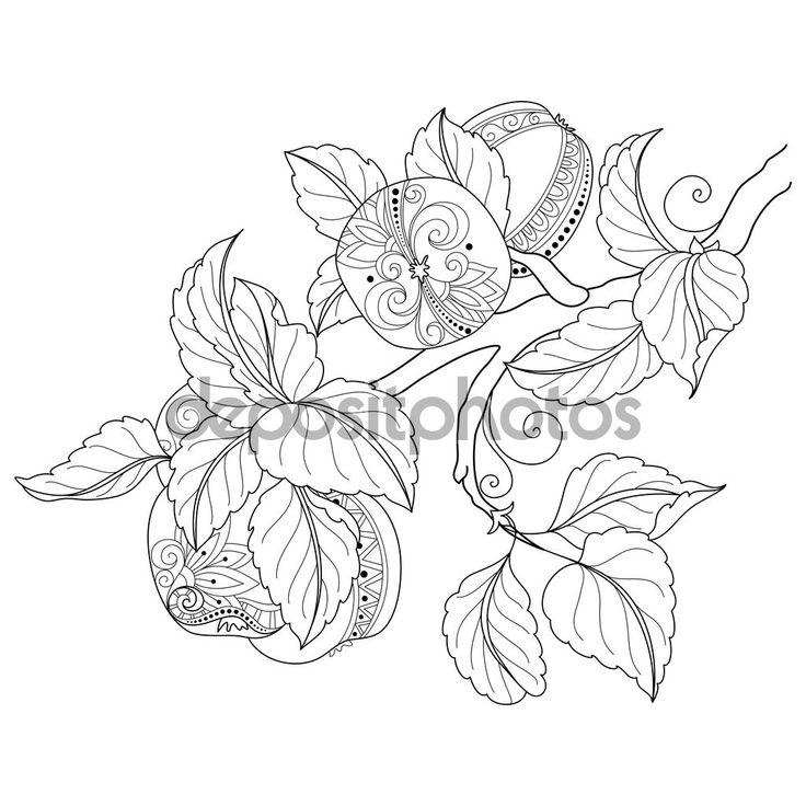 Ms de 25 ideas increbles sobre Ilustracin de fruta en Pinterest