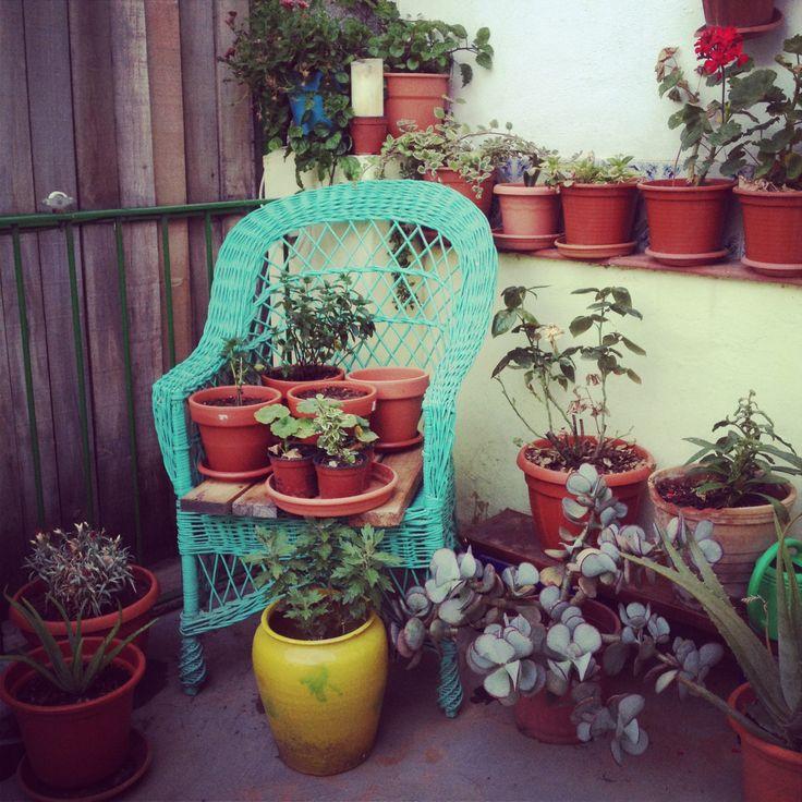 Terrasseta d'estiu #summer #garden