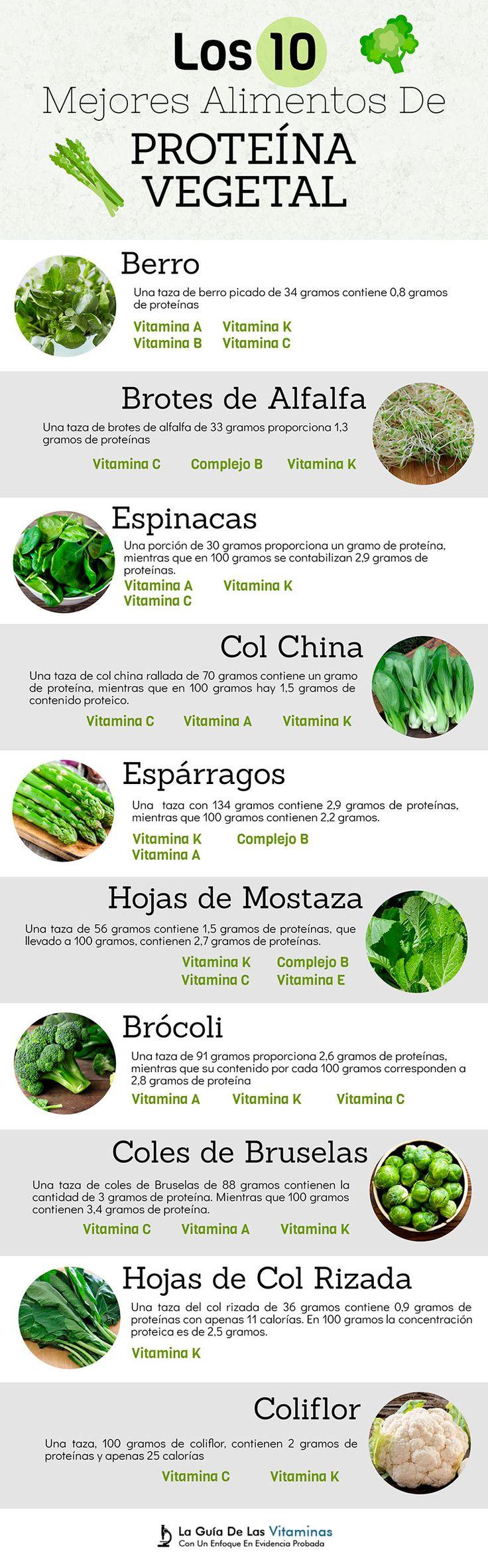 Los 10 Mejores Alimentos De Proteína Vegetal - La Guía de las Vitaminas