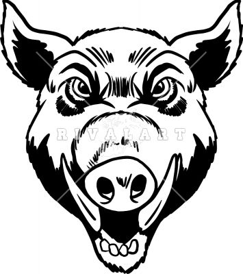 how to draw a pig head