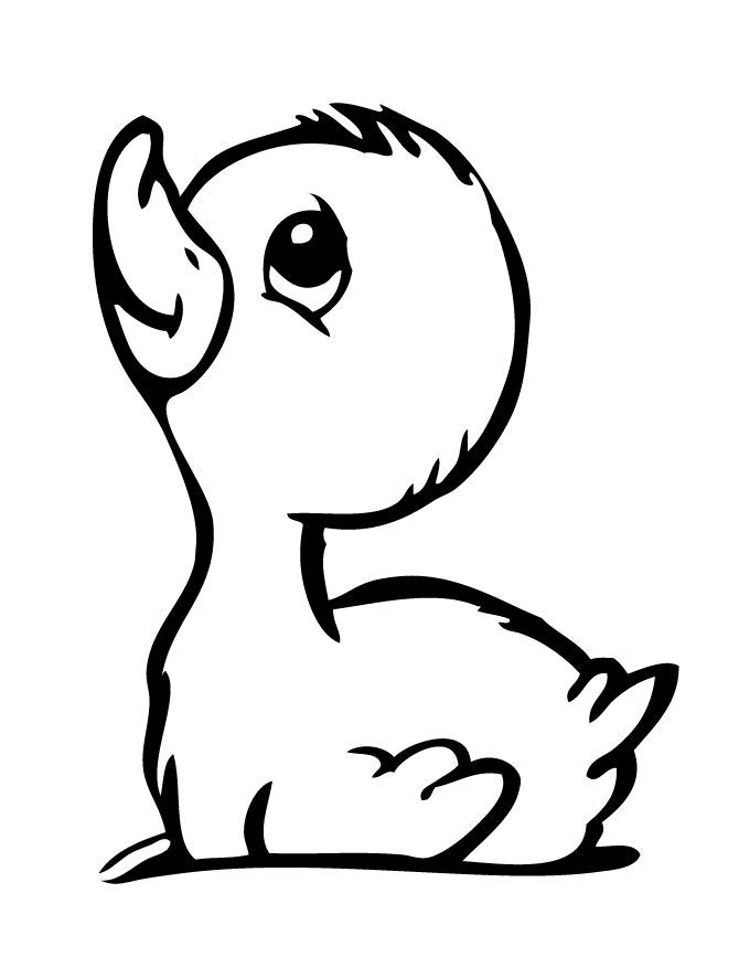 Baby Duckling Coloring Page