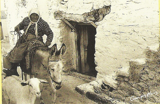 Riding a Donkey - George Meis; taken from a souvenir calendar of Crete; Info available on calendar here: http://www.cretanvista.gr/goodreading5.htm
