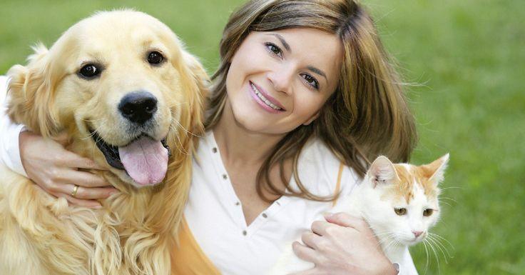 Conoce los beneficios que tus mascotas te dan diariamente. http://gustavocruzado.com/mascotas/