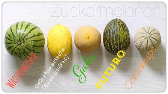 Melonensorten Melonenarten Übersicht Bild