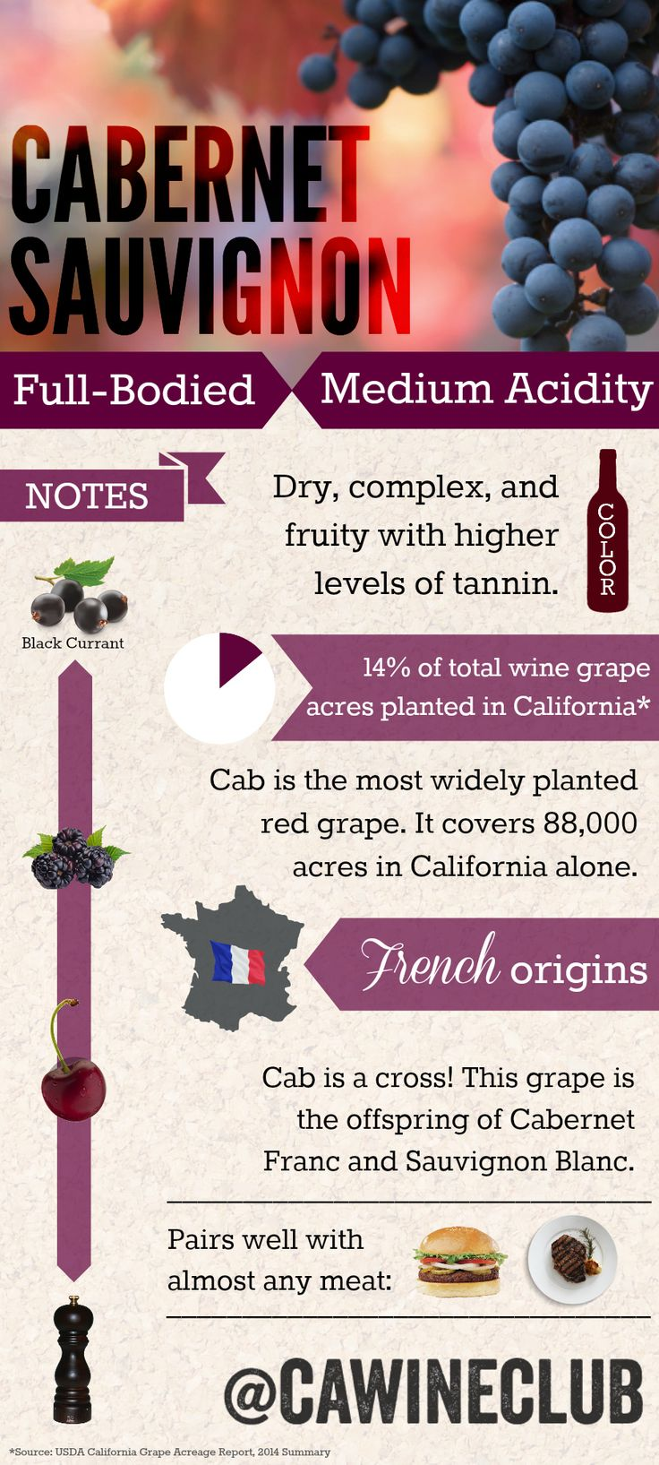 Get the facts on Cabernet Sauvignon #wine #winefacts #cabernetsauvignon…