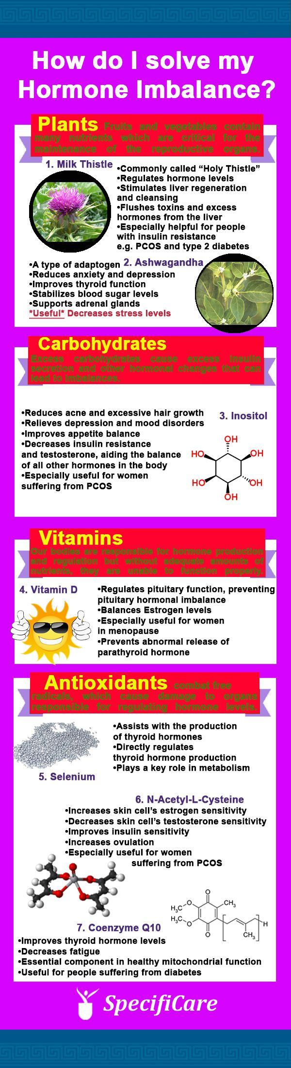 Hormone Balance Top Nutrients Infographic