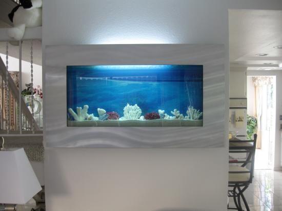 Best 25 wall aquarium ideas on pinterest fish tanks for Wall fish tanks