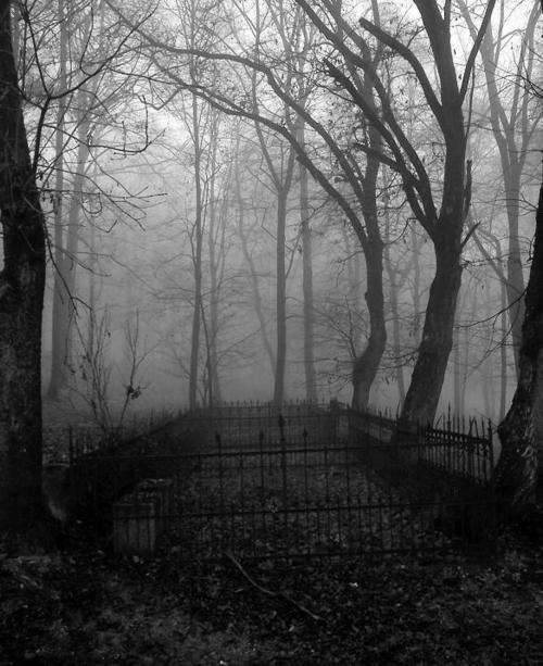 Fog over old cemetery gate