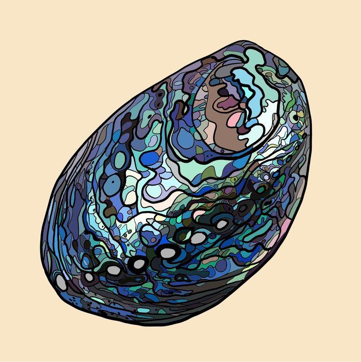 Paua Shell on Photo Block
