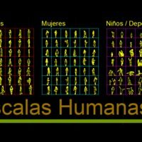 Human Scales (dwg - Autocad drawing ) - Others