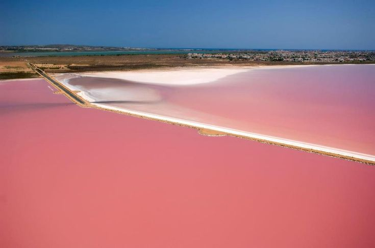At the end of the summer you can see an incredible landscape at Torrevieja Salt Lagoons, the water becomes totally pink. Discover, travel. #travel
