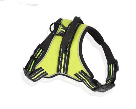 Tailun Pet Soft  Comfortable Summer Hope 3M Reflective No Pull Neoprene Padded Dog Harness 3 Colors Matching Collar Available Separately L Green >>> You can get additional details at the image link.Note:It is affiliate link to Amazon.