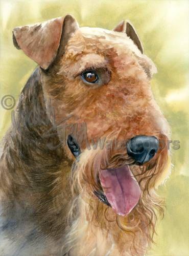 "Airedale terriër, AKC terriër, huisdier portret hond kunst, aquarel Print, Wall Art, Decor van het huis, ""King of Terriers"" door Judith Stein"
