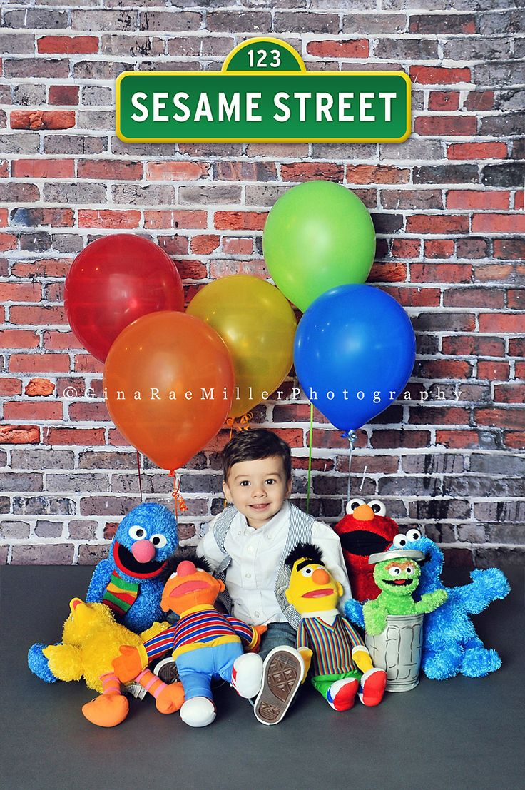 the gang's all here! | children | sesame street | Gina Rae Miller Photography » Long Island, New York
