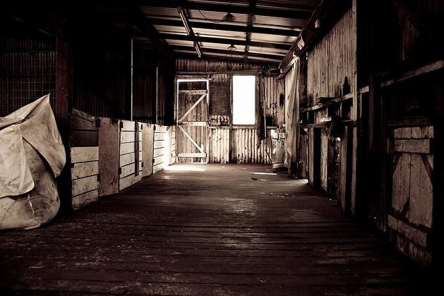 Old Shearing Shed