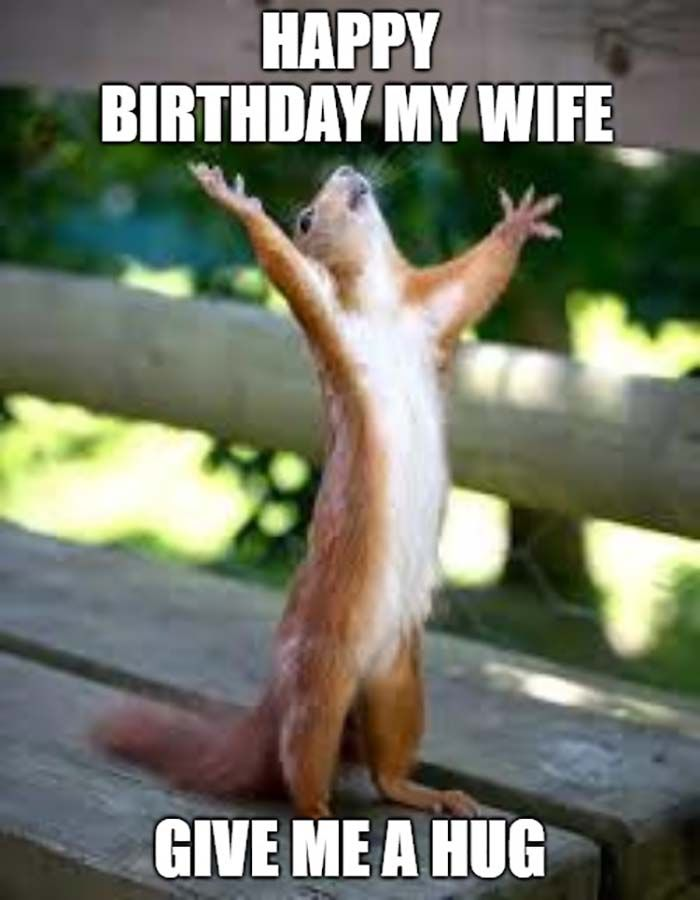 23 Awesome Happy Birthday Wife Meme Funny Happy Birthday Meme Happy Birthday Cousin Meme Happy Birthday Meme