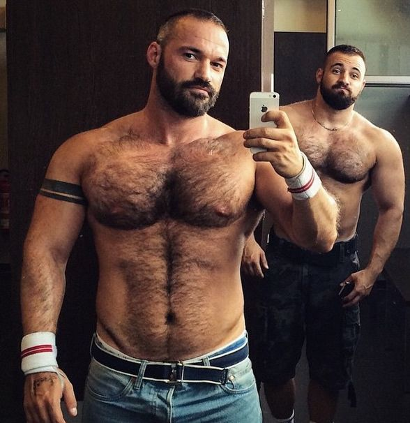 Muscle Bear Dp