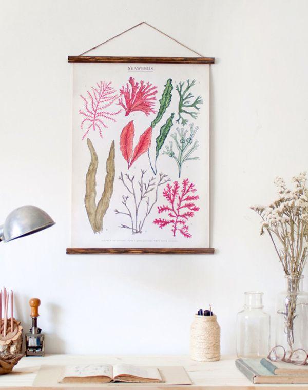 Les affiches botaniques vintages - Lili in Wonderland