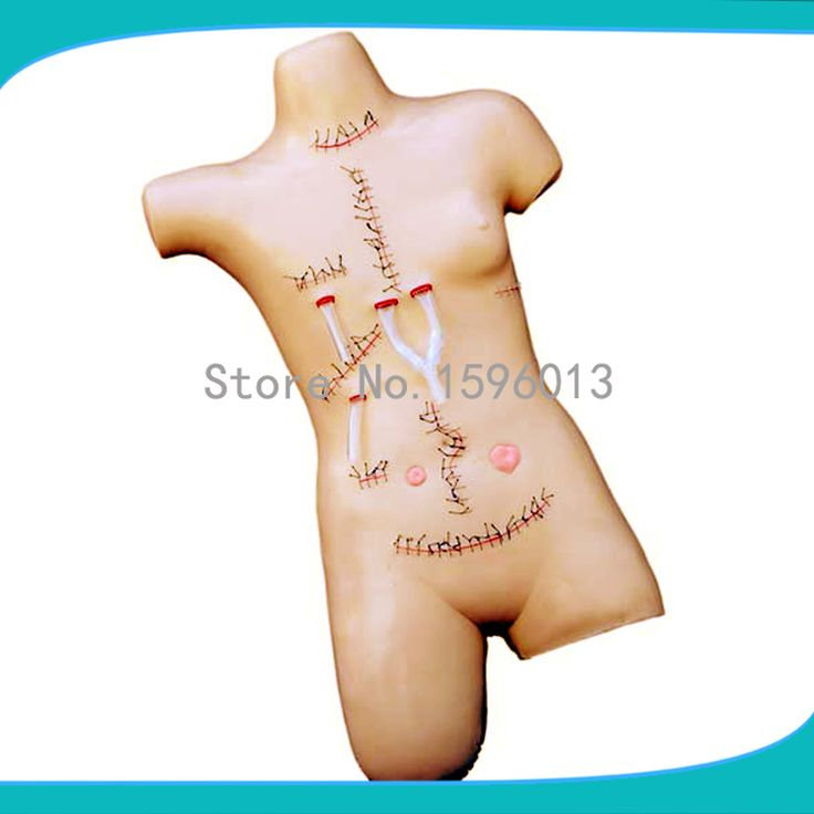 HOT Surgical Suture and Bandaging Model,  surgical suture model/simulator