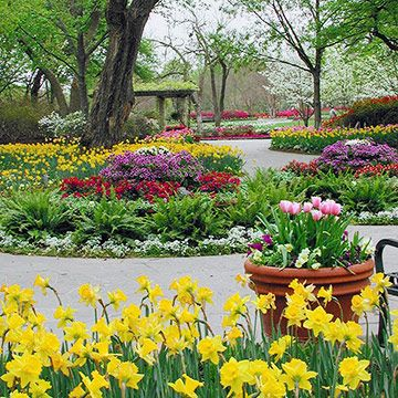 Landscaping Ideas from the Dallas Arboretum