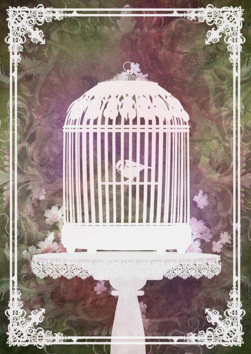 gypsyinhersoul:  Birdcage