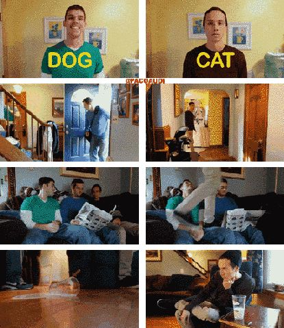 This Man Acted Out Situations As A Dog vs. As A Cat and He Couldn't Possibly Be More Accurate! #LOL