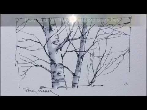Learn how to draw a tree with pen and ink in this lesson. We'll take a look at drawing two different types of trees and explore the 3 key elements to finding...