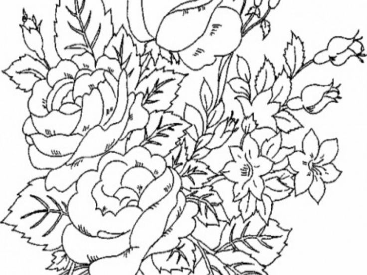 Free Printable Flower Coloring Pages For Adults VoteForVerde Flowers In Uncategorized Style