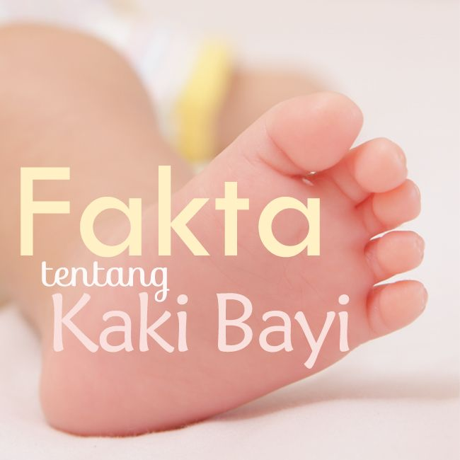 Ingin tahu fakta tentang kaki bayi? :: Wanna know the facts of baby's tiny little feet? ::