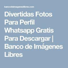Divertidas Fotos Para Perfil Whatsapp Gratis Para Descargar | Banco de Imágenes Libres