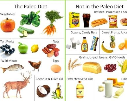 paleolithic diet meal plan