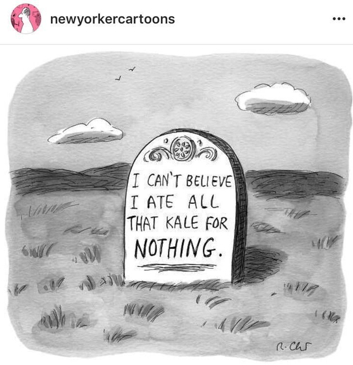 Great news everybody: The funny New Yorker cartoons got a dedicated Instagram…