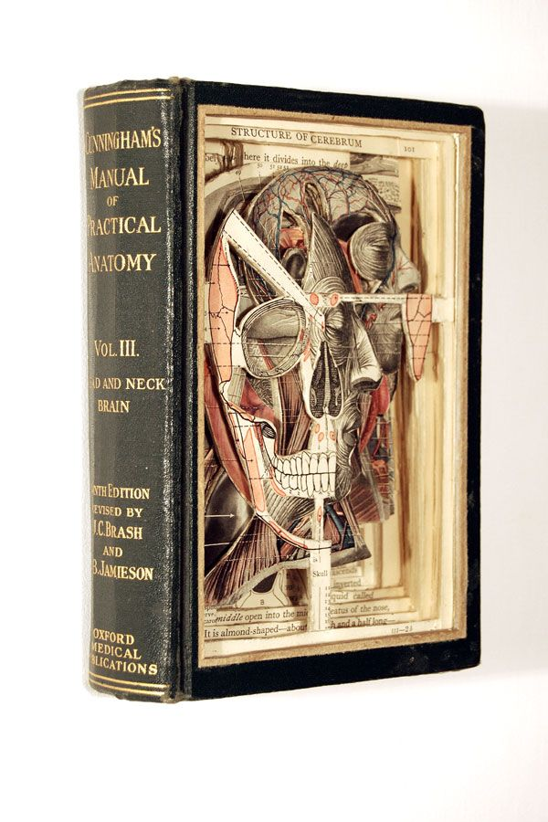 Using knives, tweezers and surgical tools, Brian Dettmer carves one page at a time. Nothing inside the out-of-date encyclopedias, medical journals, illustration books, or dictionaries is relocated or implanted, only removed.: Art Anatomy, Crafts Books, Anatomy Art, Books Art, Anatomy Books, Books Design, Brian Dettmer, Altered Books, Books Surgeon