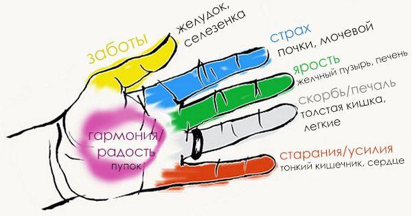 Секрет гармонии тела и души! Оказывается, человеческие органы неразрывно связаны с пальцами. Джин шин джитсу – это древняя форма японского искусства исцеления, которое помогает сбалансировать эмоции, только благодаря стимуляции точек на руках. В основу этого учения положен следующий принцип: каждый палец руки соединен с определенным органом и ему соответствует определенная эмоция. Если тебе необходимо воздействовать на какой-либо орган, обхвати его …