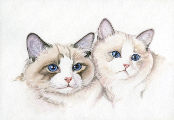 Cat Painting Ragtime Cats 5x7 Print from Original by Earthspalette, $12.00: Watercolor Painting, Cat Kittens, Pet Portraits, Kittens Paintings, Originals Watercolor, Cat Paintings, Blue Eye, 5X7 Originals, Paintings 5X7