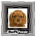 Morph Puzzle