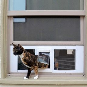 Our pet door smoothly fit into any window for a quick and easy installation.