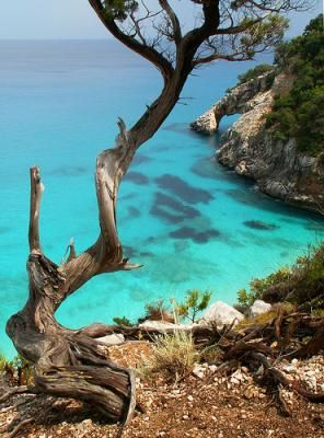 Cala Goloritze and Cala Luna (The Beach of the Moon) await you @ http://www.my-italy-piedmont-marche-and-more.com/best-beach-in-sardinia.html
