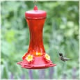 Hummingbird Migration--sightings as they happen!!!!!  See when they are getting close to you!  I love this site!
