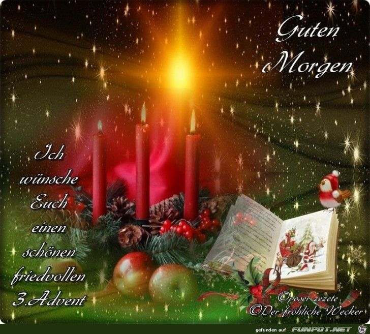 227 best Weihnachten images on Pinterest Action, Animal - grten