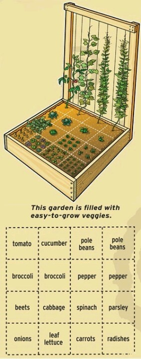 Growing my own food.