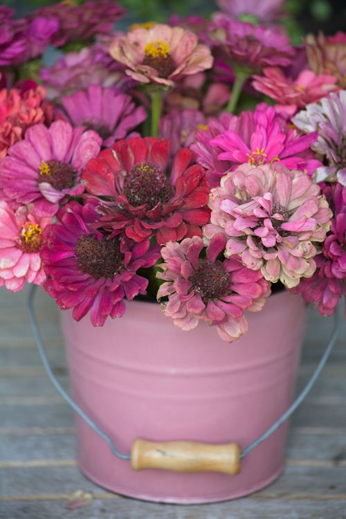 zinnias are sooo hardy!: Summer Flowers, Rose Gardens, Pink Flowers, Pink Bouquets, Pretty Pink, Summer Parties, Fresh Flowers, Parties Tables, Vintage Rose