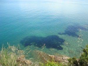 Вид на море. Вилла Порто Санто Стефано