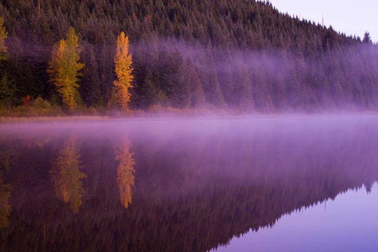 Bosques de Trillemarka, Noruega - Bosques del mundo que parecen encantados